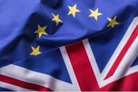 Half unsure of Brexit impact image