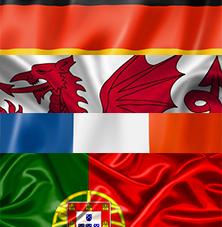 Euro 2016 Predictions image