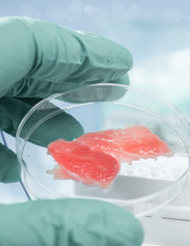 Cultured Meat Report Cover