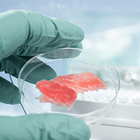 Attitudes towards Cultured Meat image
